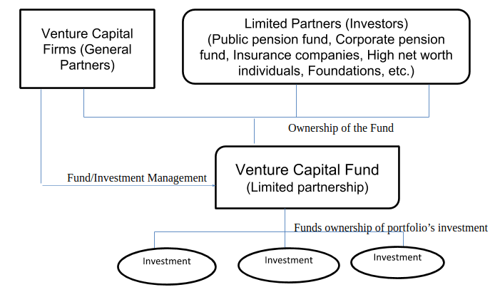Structure of Venture Capital Fund