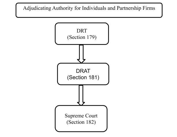 Adjudicating Authority for Individuals and Partnership Firms