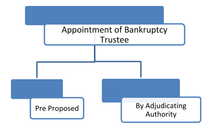 Appointment of Bankruptcy Trustee