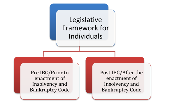 Legislative Framework for Individuals